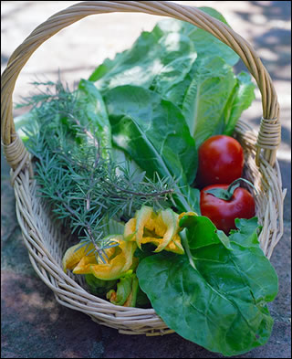Basket of Tuscan Vegetables